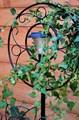 Шпалера для сада