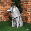 Волк F07562