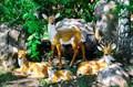 Фигура оленей