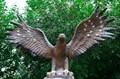 Орел фонтан для дачи