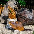 Декоративная фигура Бобер на пне - фото 37268
