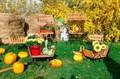 Садовая тележка двухколесная - фото 39581