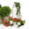 Садовая стойка для цветов