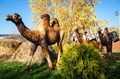 Верблюд ростовая фигура - фото 50553